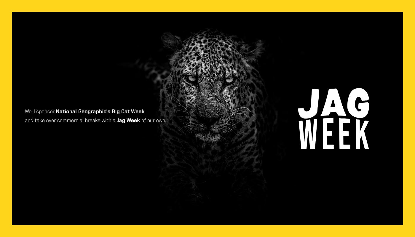 jagweek-intro